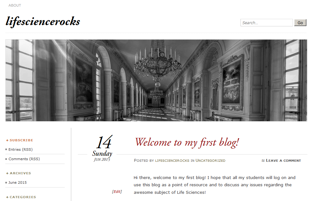 Welcome to my first blog!